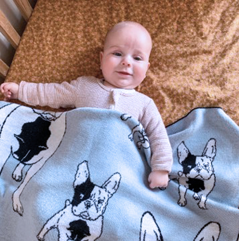 Frenchie Pure Wool Blanket